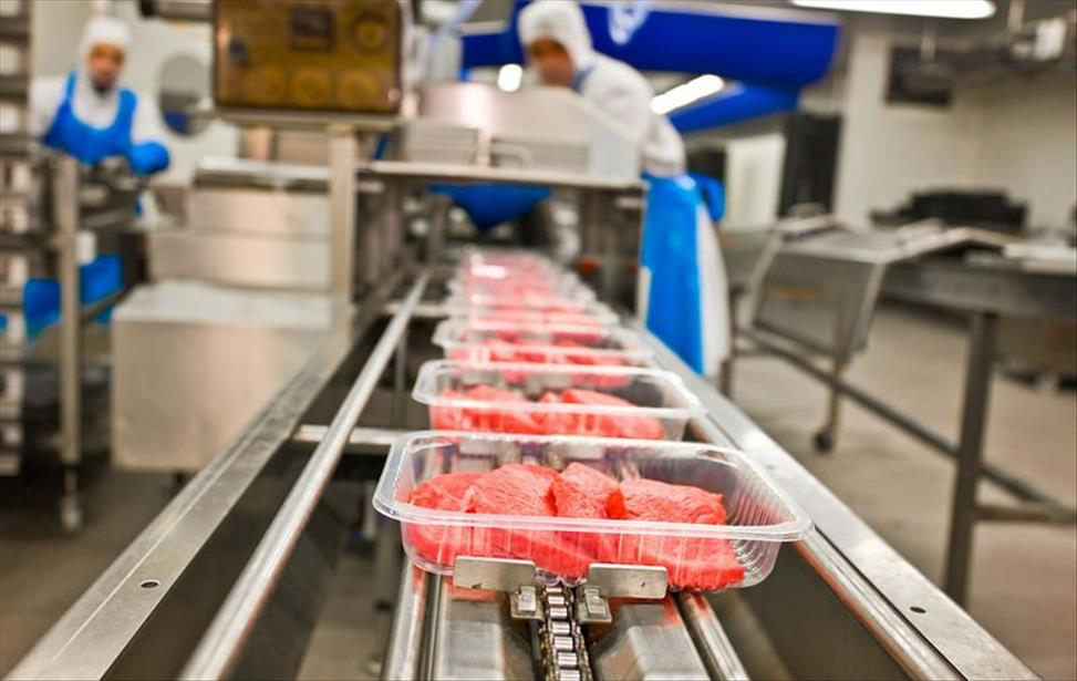 Por que investir na automatização das indústrias de alimentos