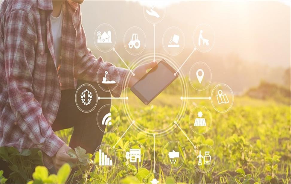 Pesquisa sobre agricultura digital aponta uso e expectativas dos produtores em relação às tecnologias