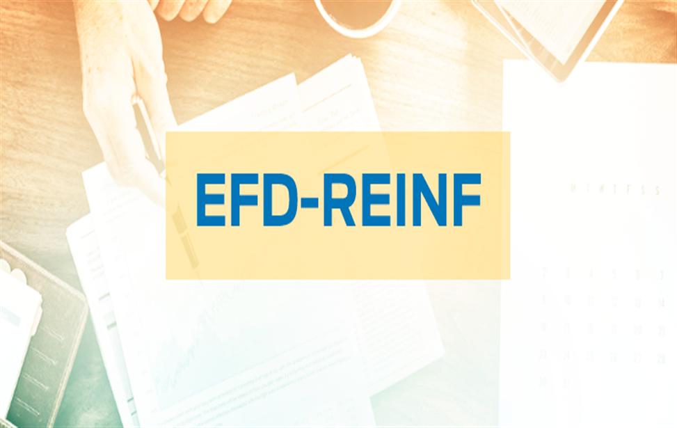 Adiamento da entrada em produção do 3º Grupo na EFDREINF