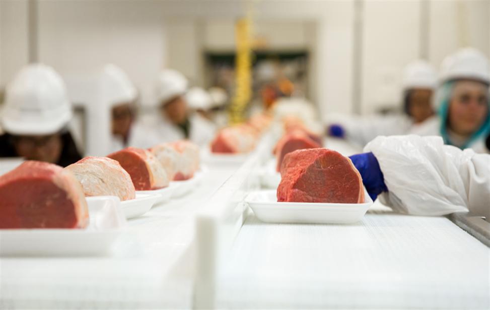 Indústria de Alimentos gera 8 mil empregos e se prepara para investimentos em tecnologia