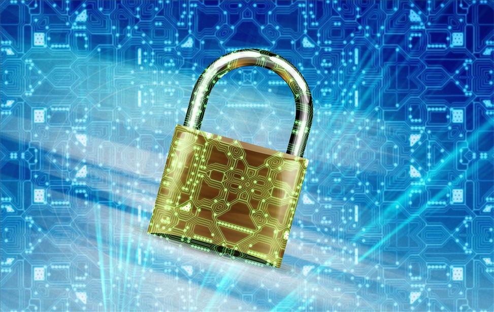 Garantia de segurança Datavale