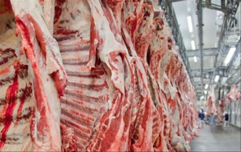 Exportações de carne apresentam crescimento no primeiro semestre de 2020